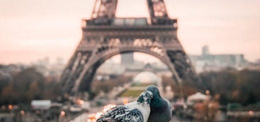 Eiffelovka ako dominanta Paríža. Čo ste o oceľové dáme nevedeli?