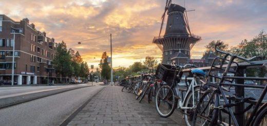 Do Amsterdamu nielen za tulipány, ale taky za veternými mlynmi!
